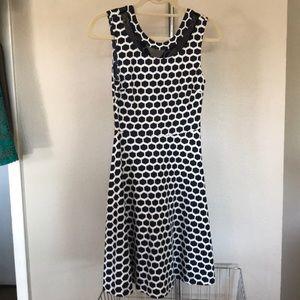 Pixley XS Navy and White Polka Dot Dress Like New